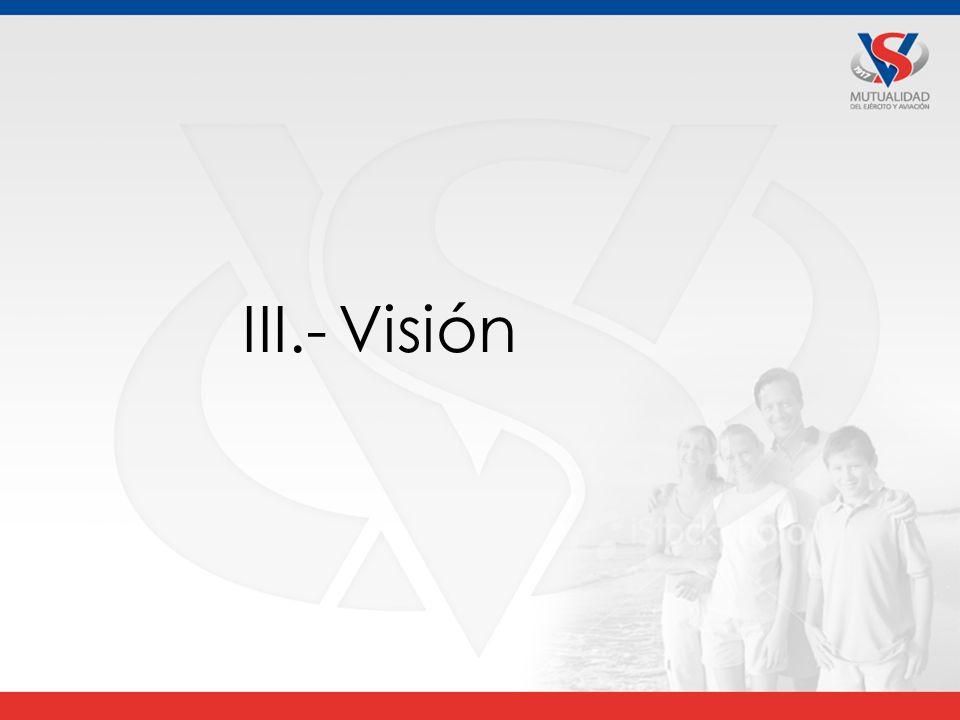 III.- Visión