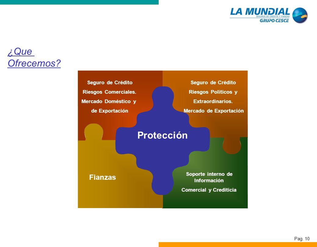 ¿Que Ofrecemos Protección Fianzas Seguro de Crédito