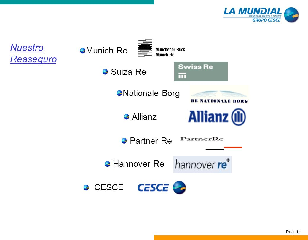 Nuestro Reaseguro Munich Re Suiza Re Nationale Borg Allianz Partner Re