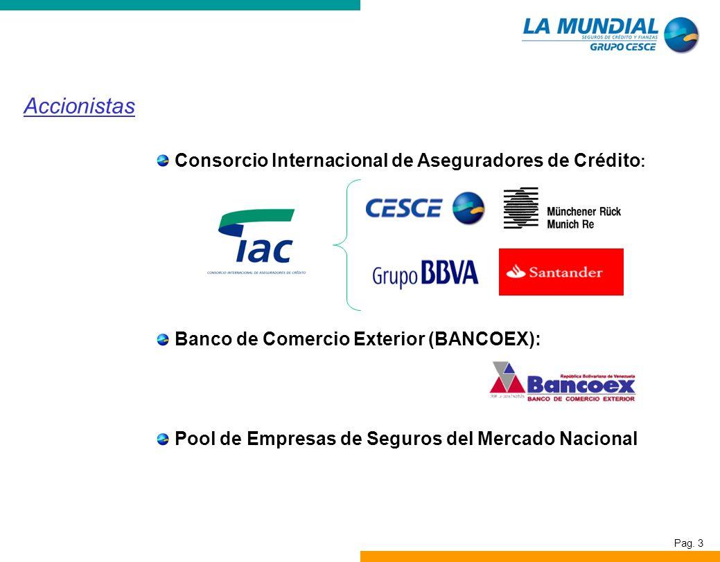 Accionistas Consorcio Internacional de Aseguradores de Crédito: