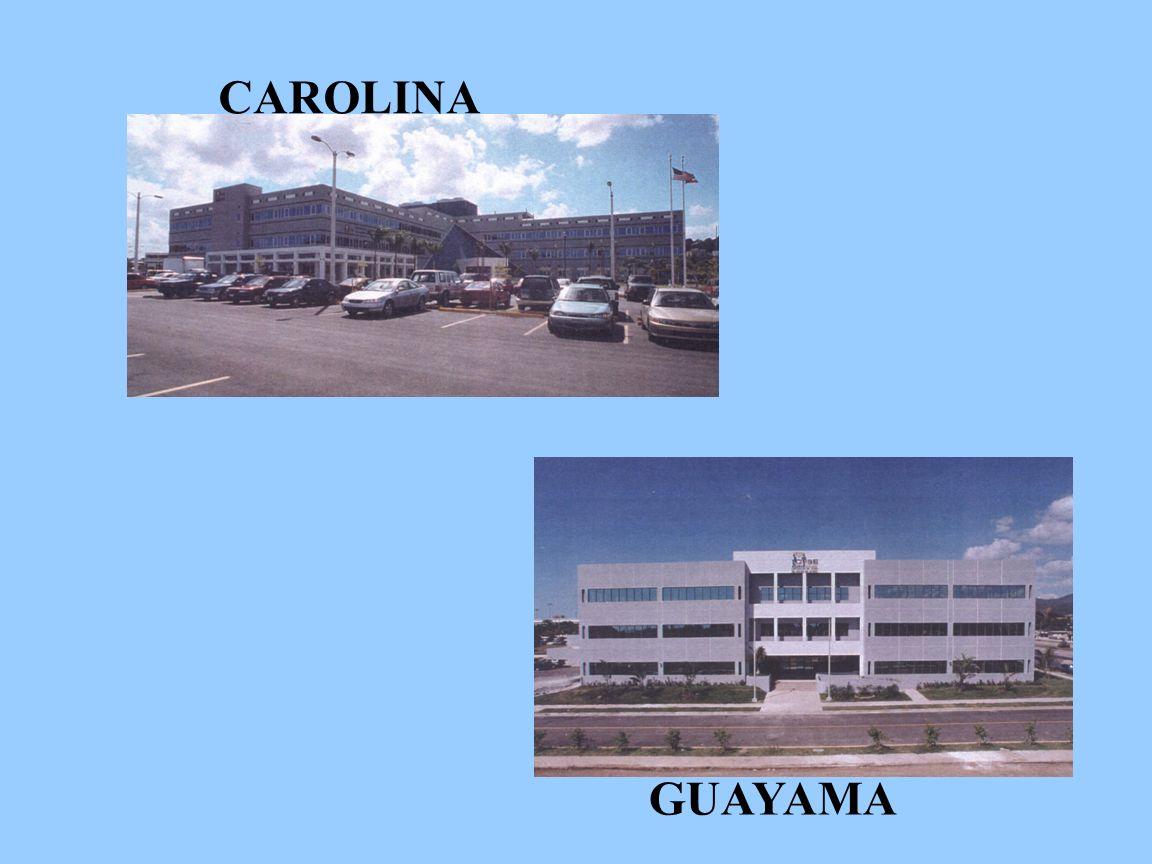 CAROLINA GUAYAMA