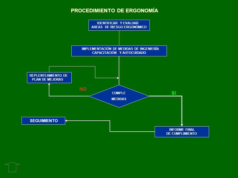 PROCEDIMIENTO DE ERGONOMÍA