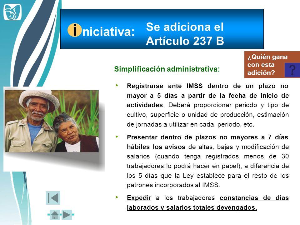 i niciativa: Se adiciona el Artículo 237 B
