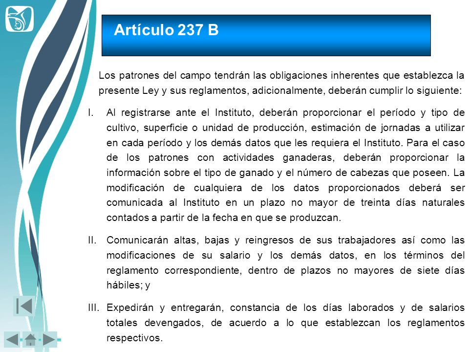 Artículo 237 B