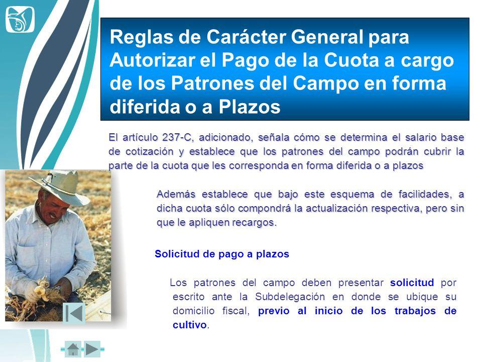 Reglas de Carácter General para Autorizar el Pago de la Cuota a cargo de los Patrones del Campo en forma diferida o a Plazos