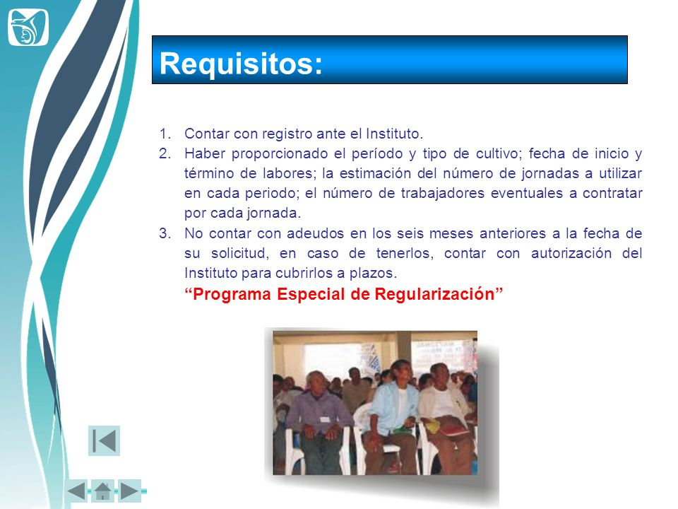 Requisitos: Programa Especial de Regularización