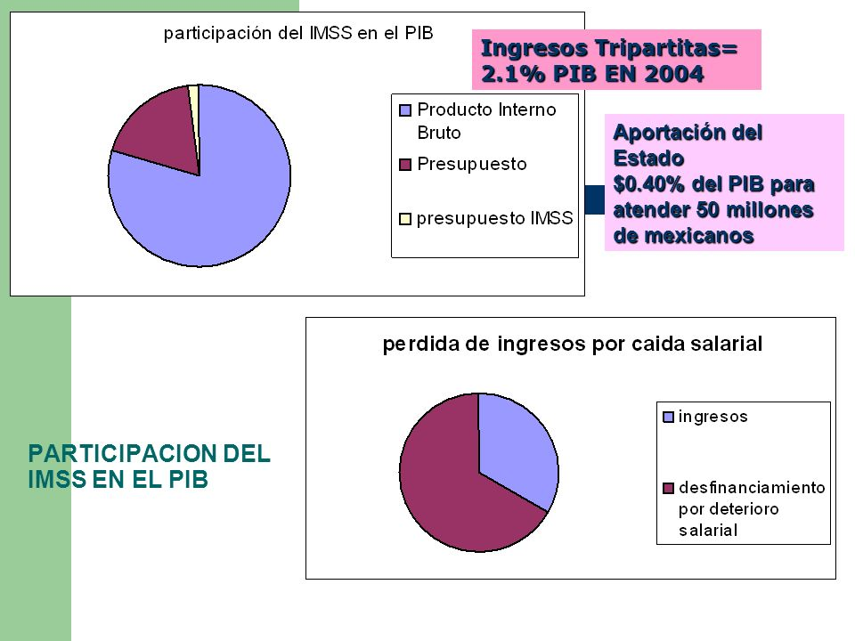 PARTICIPACION DEL IMSS EN EL PIB