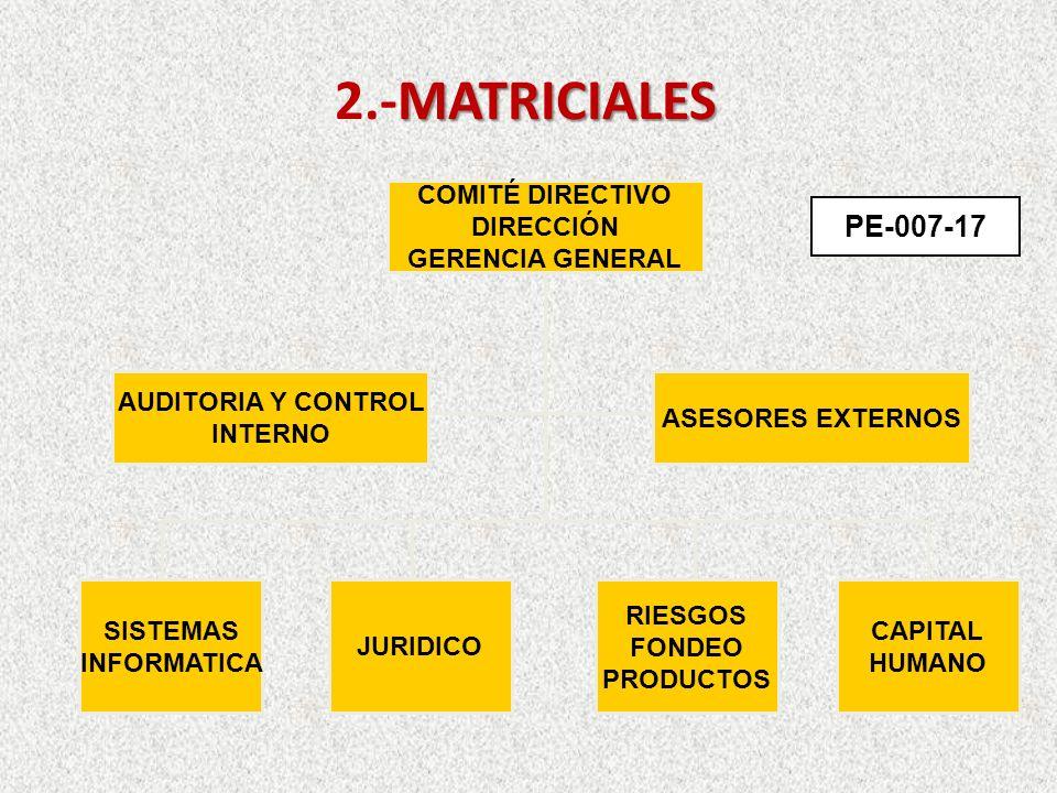 2.-MATRICIALES PE-007-17 COMITÉ DIRECTIVO DIRECCIÓN GERENCIA GENERAL