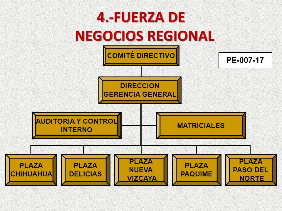 4.-FUERZA DE NEGOCIOS REGIONAL