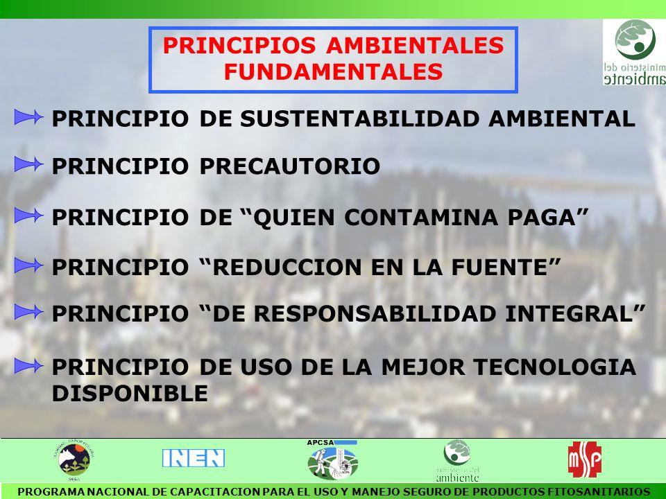 PRINCIPIOS AMBIENTALES FUNDAMENTALES