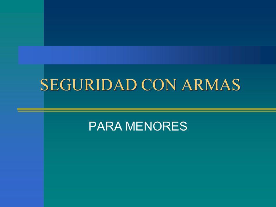 SEGURIDAD CON ARMAS PARA MENORES