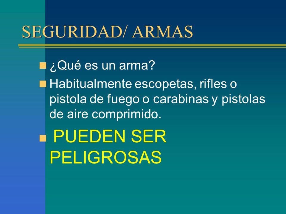 SEGURIDAD/ ARMAS ¿Qué es un arma