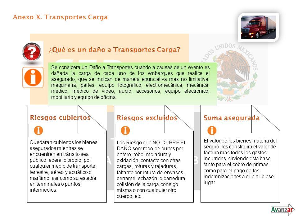 Anexo X. Transportes Carga