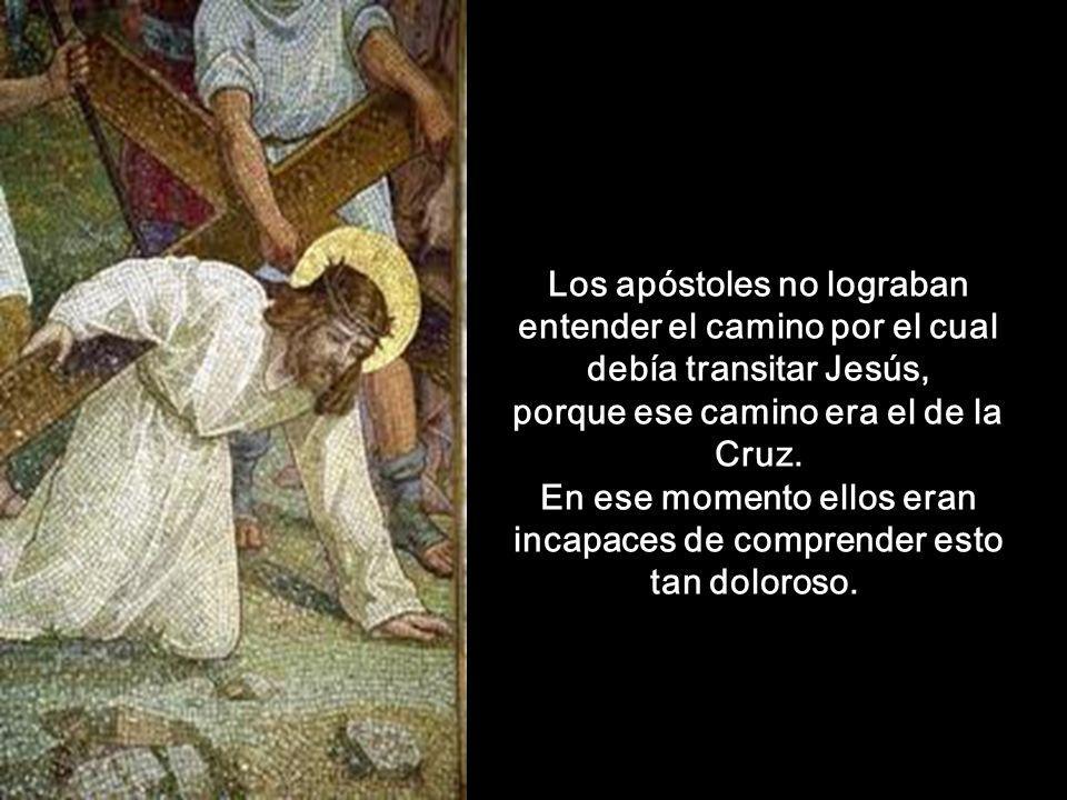 Los apóstoles no lograban entender el camino por el cual debía transitar Jesús, porque ese camino era el de la Cruz.
