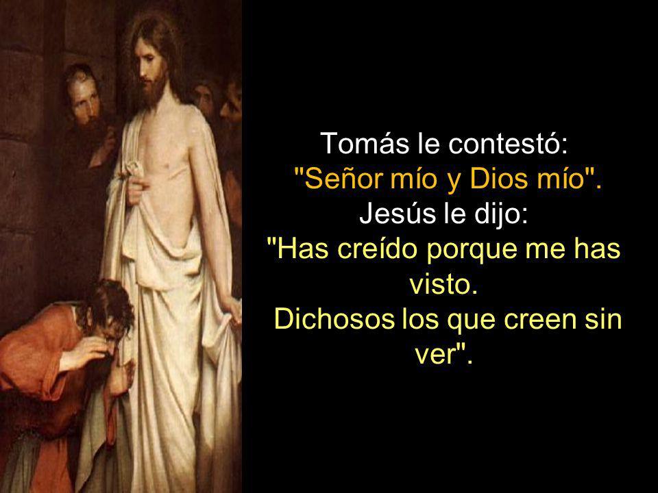 Tomás le contestó: Señor mío y Dios mío