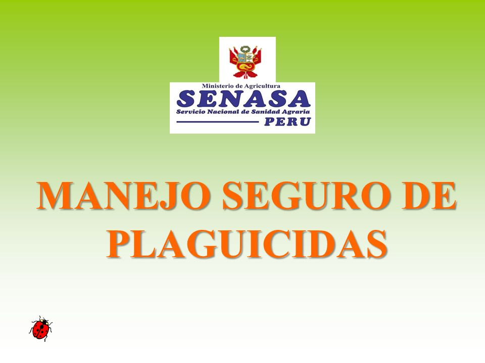 MANEJO SEGURO DE PLAGUICIDAS