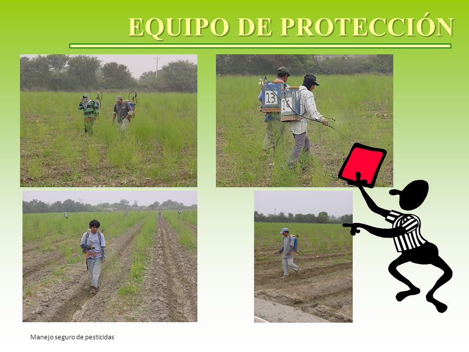 EQUIPO DE PROTECCIÓN Manejo seguro de pesticidas