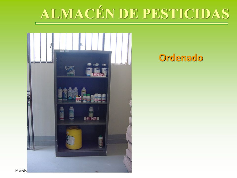 ALMACÉN DE PESTICIDAS Ordenado Manejo seguro de pesticidas