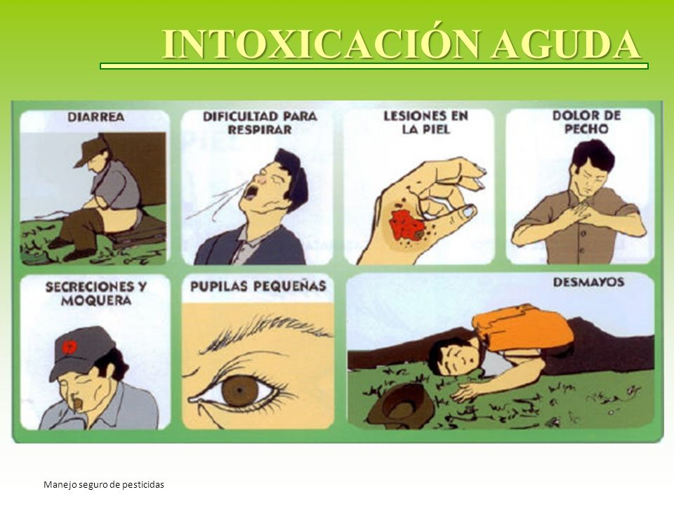 INTOXICACIÓN AGUDA Manejo seguro de pesticidas