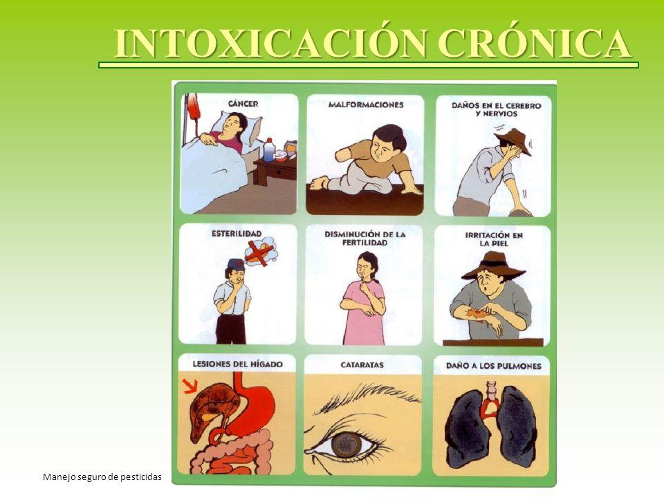 INTOXICACIÓN CRÓNICA Manejo seguro de pesticidas