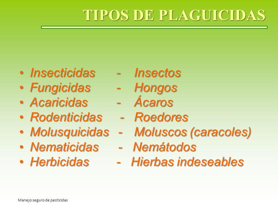 TIPOS DE PLAGUICIDAS Insecticidas - Insectos Fungicidas - Hongos