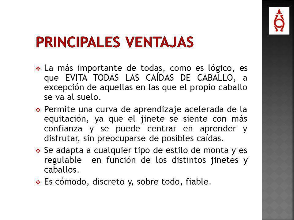 PRINCIPALES VENTAJAS