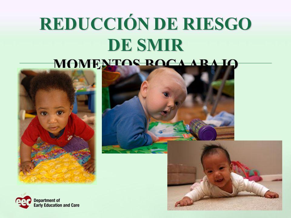 REDUCCIÓN DE RIESGO DE SMIR