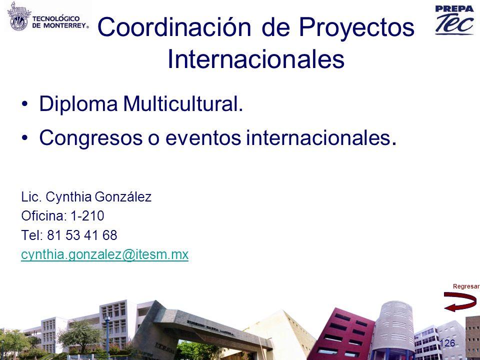 Coordinación de Proyectos Internacionales