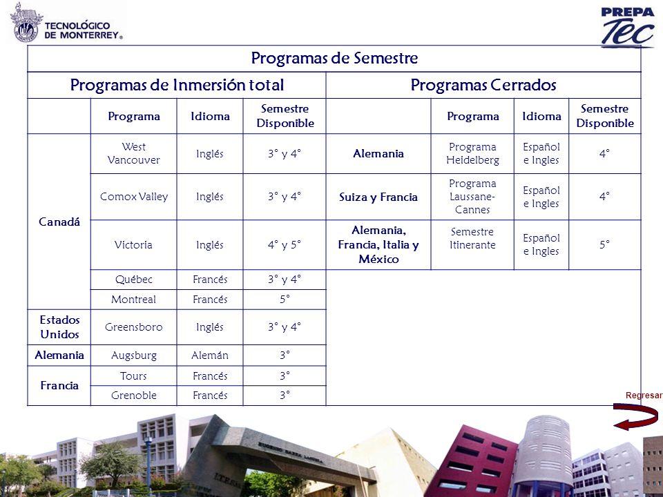 Programas de Inmersión total Alemania, Francia, Italia y México