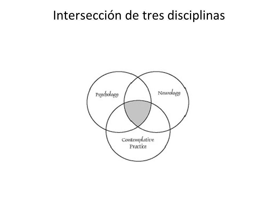 Intersección de tres disciplinas