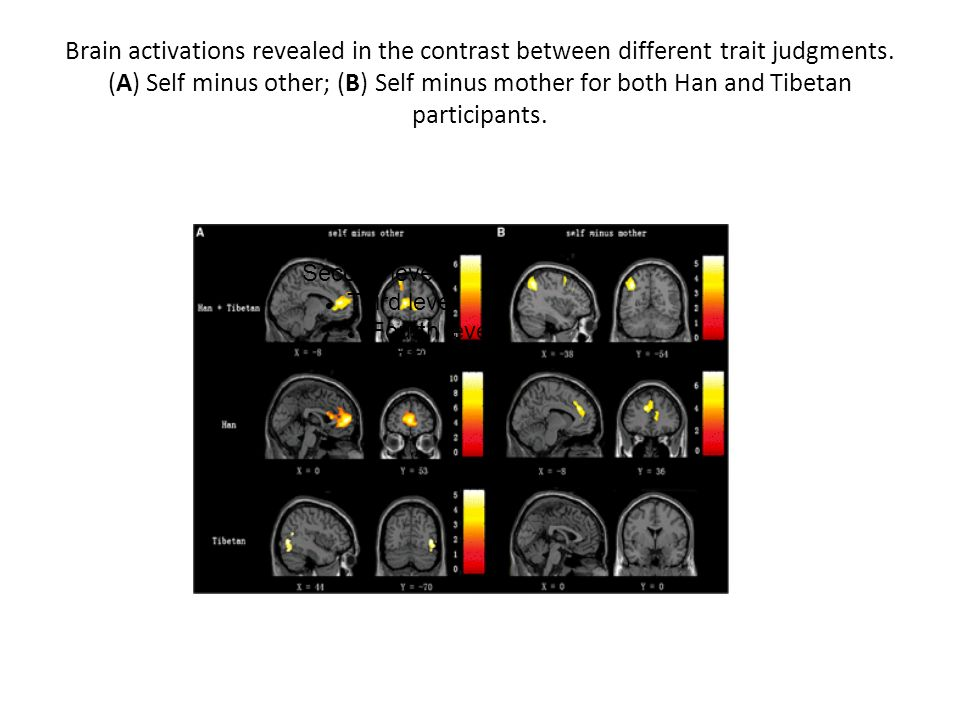 Brain activations revealed in the contrast between different trait judgments. (A) Self minus other; (B) Self minus mother for both Han and Tibetan participants.