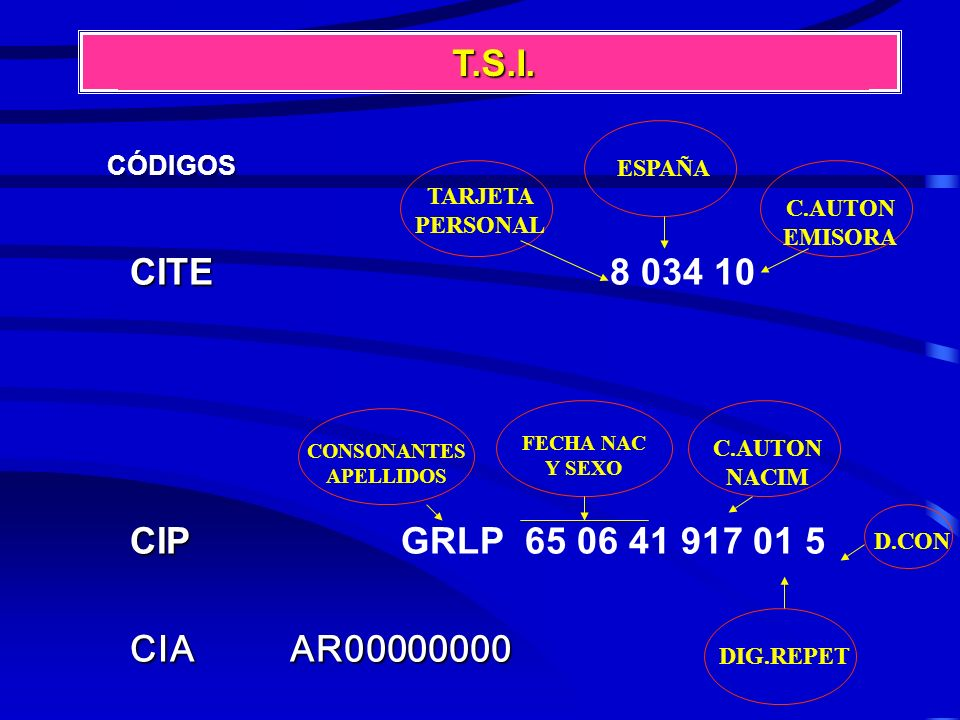 T.S.I. CITE 8 034 10 CIP GRLP 65 06 41 917 01 5 CIA AR00000000 CÓDIGOS