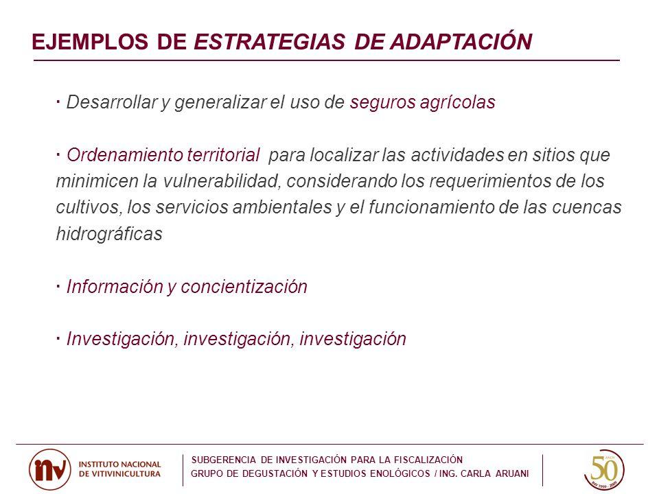 EJEMPLOS DE ESTRATEGIAS DE ADAPTACIÓN
