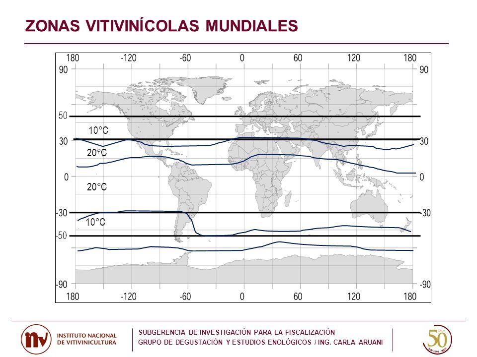 ZONAS VITIVINĺCOLAS MUNDIALES