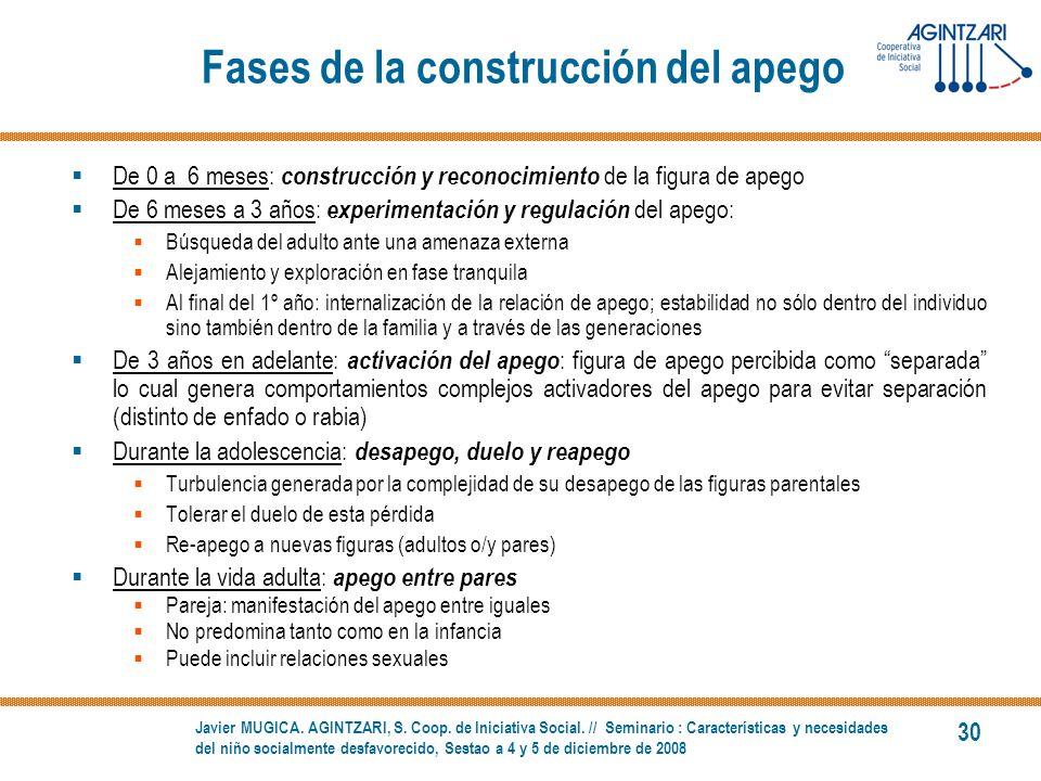 Fases de la construcción del apego