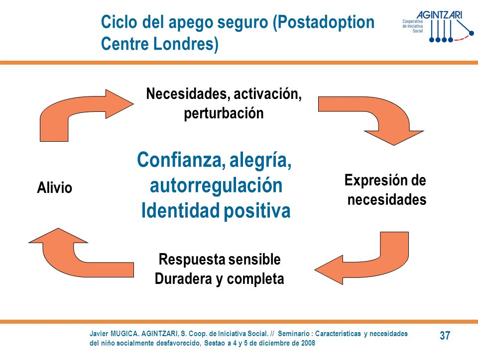 Ciclo del apego seguro (Postadoption Centre Londres)