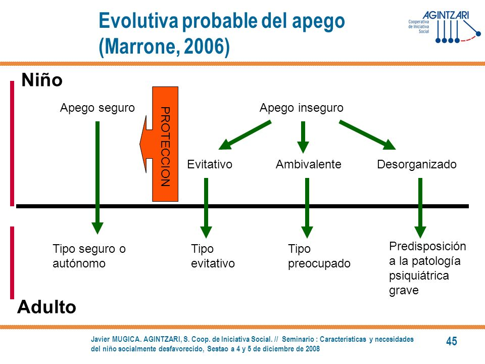 Evolutiva probable del apego (Marrone, 2006)