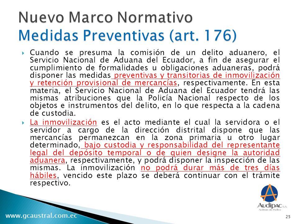 Nuevo Marco Normativo Medidas Preventivas (art. 176)