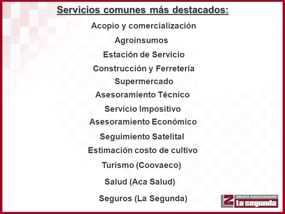 Servicios comunes más destacados: