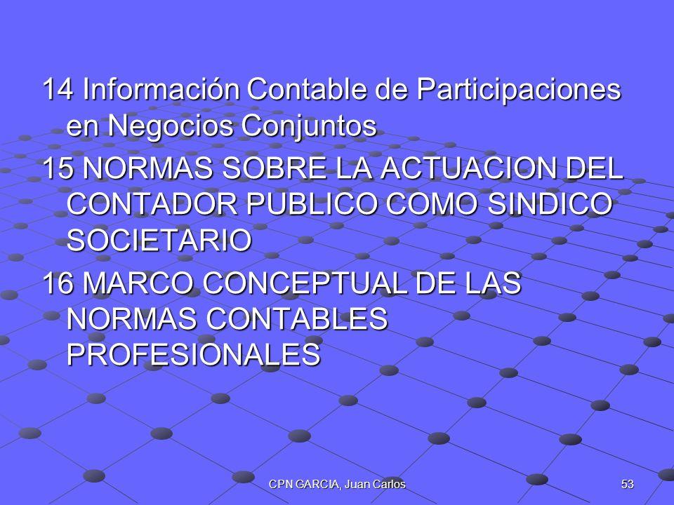 14 Información Contable de Participaciones en Negocios Conjuntos