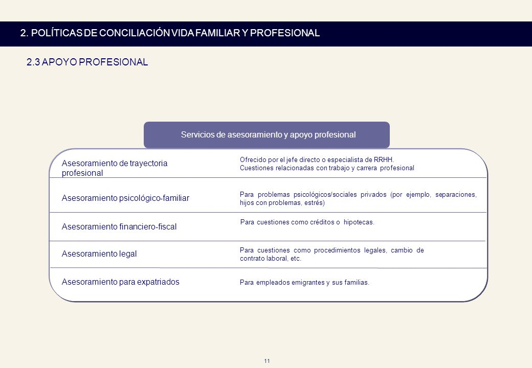 Servicios de asesoramiento y apoyo profesional