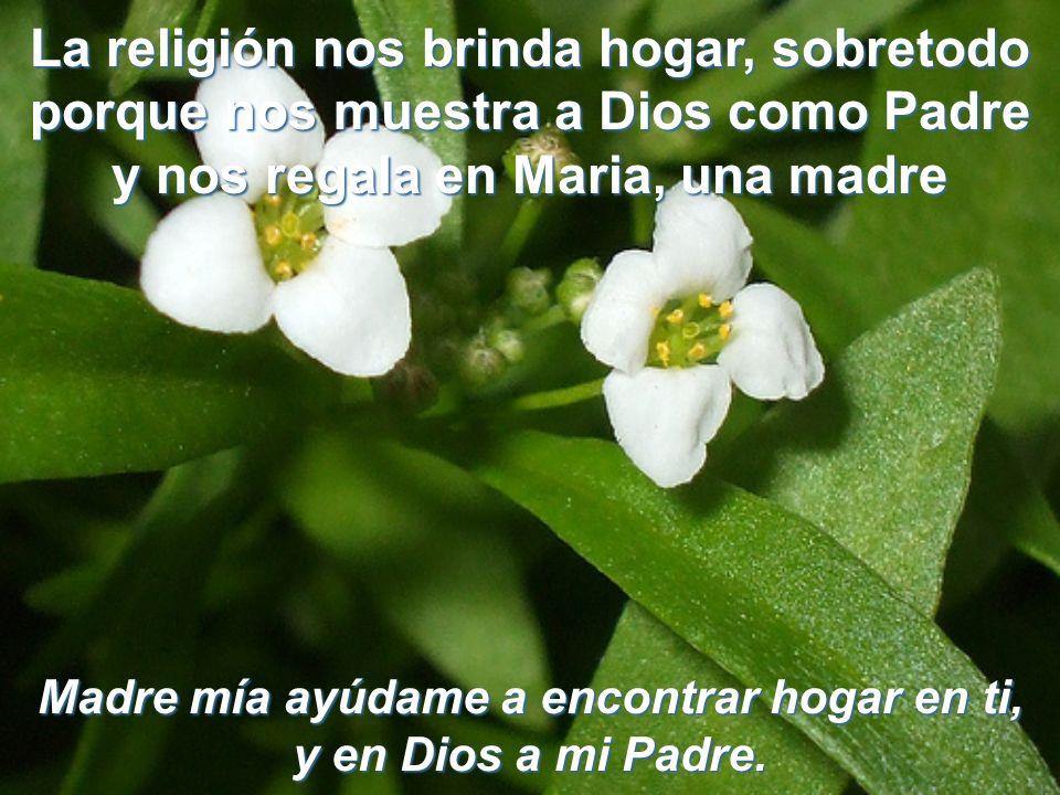 Madre mía ayúdame a encontrar hogar en ti, y en Dios a mi Padre.