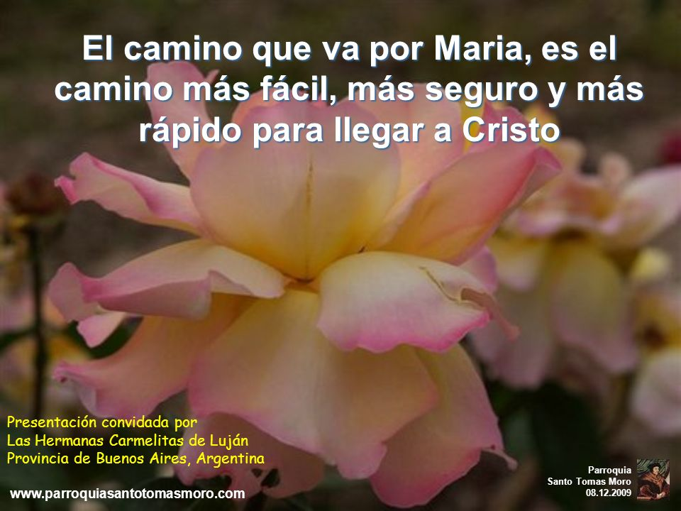 El camino que va por Maria, es el camino más fácil, más seguro y más rápido para llegar a Cristo