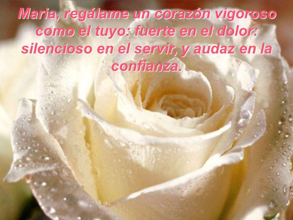Maria, regálame un corazón vigoroso como el tuyo: fuerte en el dolor: silencioso en el servir, y audaz en la confianza.