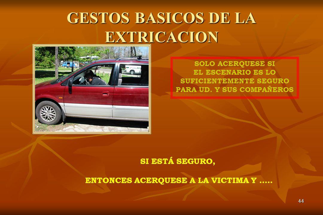 GESTOS BASICOS DE LA EXTRICACION