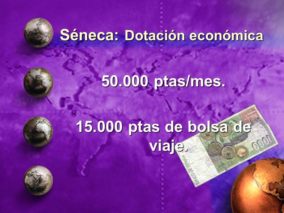 Séneca: Dotación económica