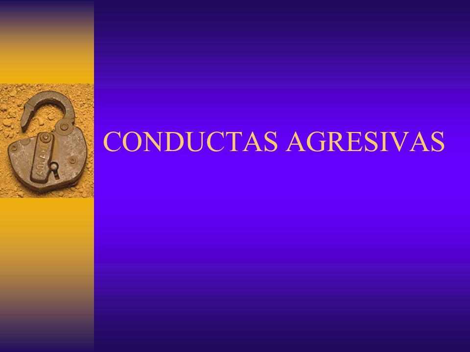 CONDUCTAS AGRESIVAS