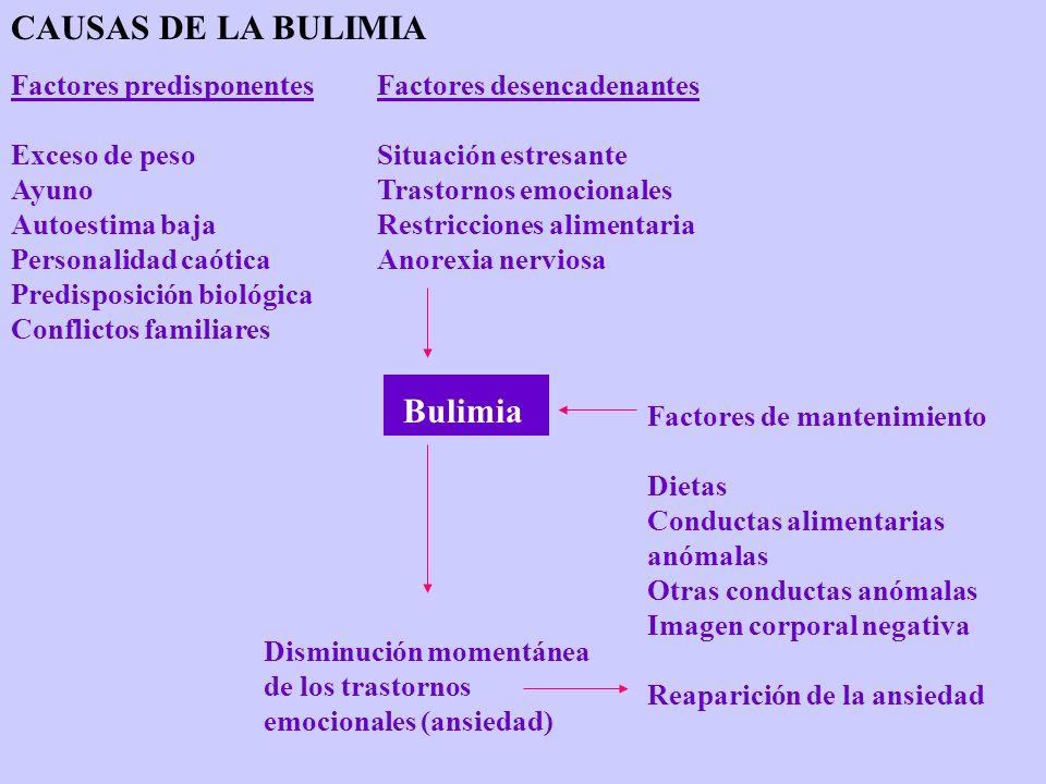 CAUSAS DE LA BULIMIA Bulimia Factores predisponentes Exceso de peso