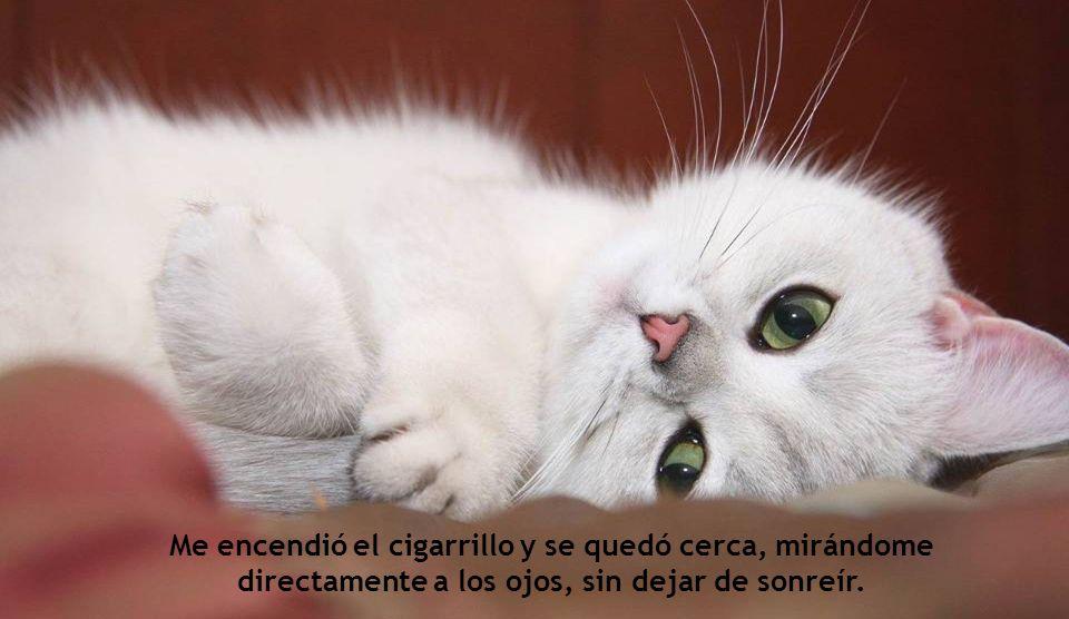 Me encendió el cigarrillo y se quedó cerca, mirándome directamente a los ojos, sin dejar de sonreír.