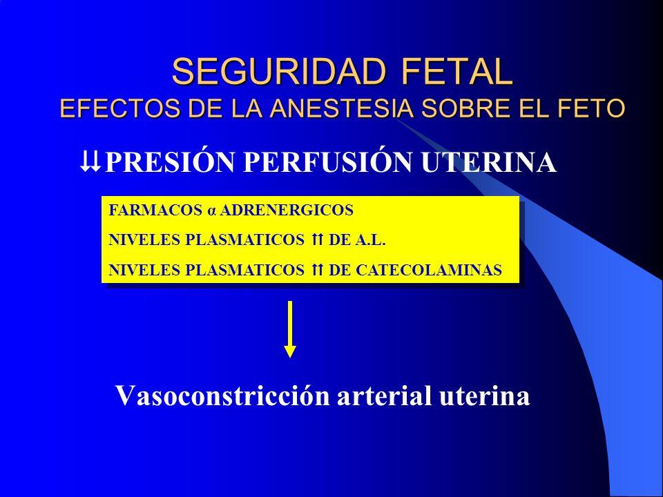 SEGURIDAD FETAL EFECTOS DE LA ANESTESIA SOBRE EL FETO